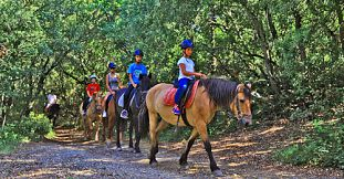 Kids Pony Ride at Domaine de L'Etoile