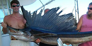 Deep Sea/ Big Game Fishing in Mauritius