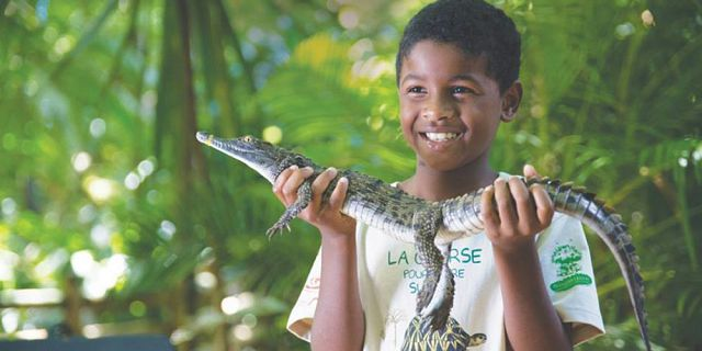 Themed adventure packages at crocodile giant tortoises park  (1)