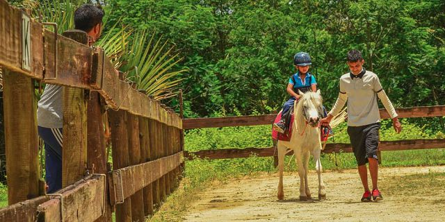 Horse riding excursion (8)